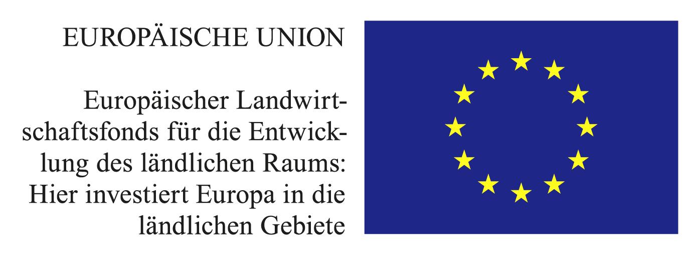 Europäische Union Logo