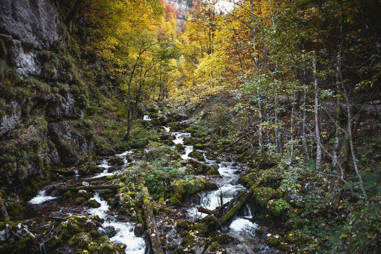 200_Nationalpark_Gesäuse_2019©StefanLeitner (2)