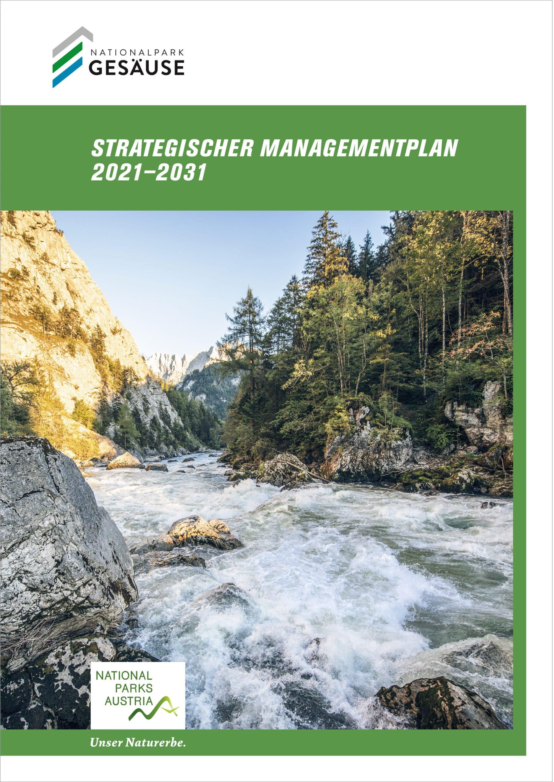 Der strategische Managementplan für die nächsten zehn Jahre (Copyright Stefan Leitner)