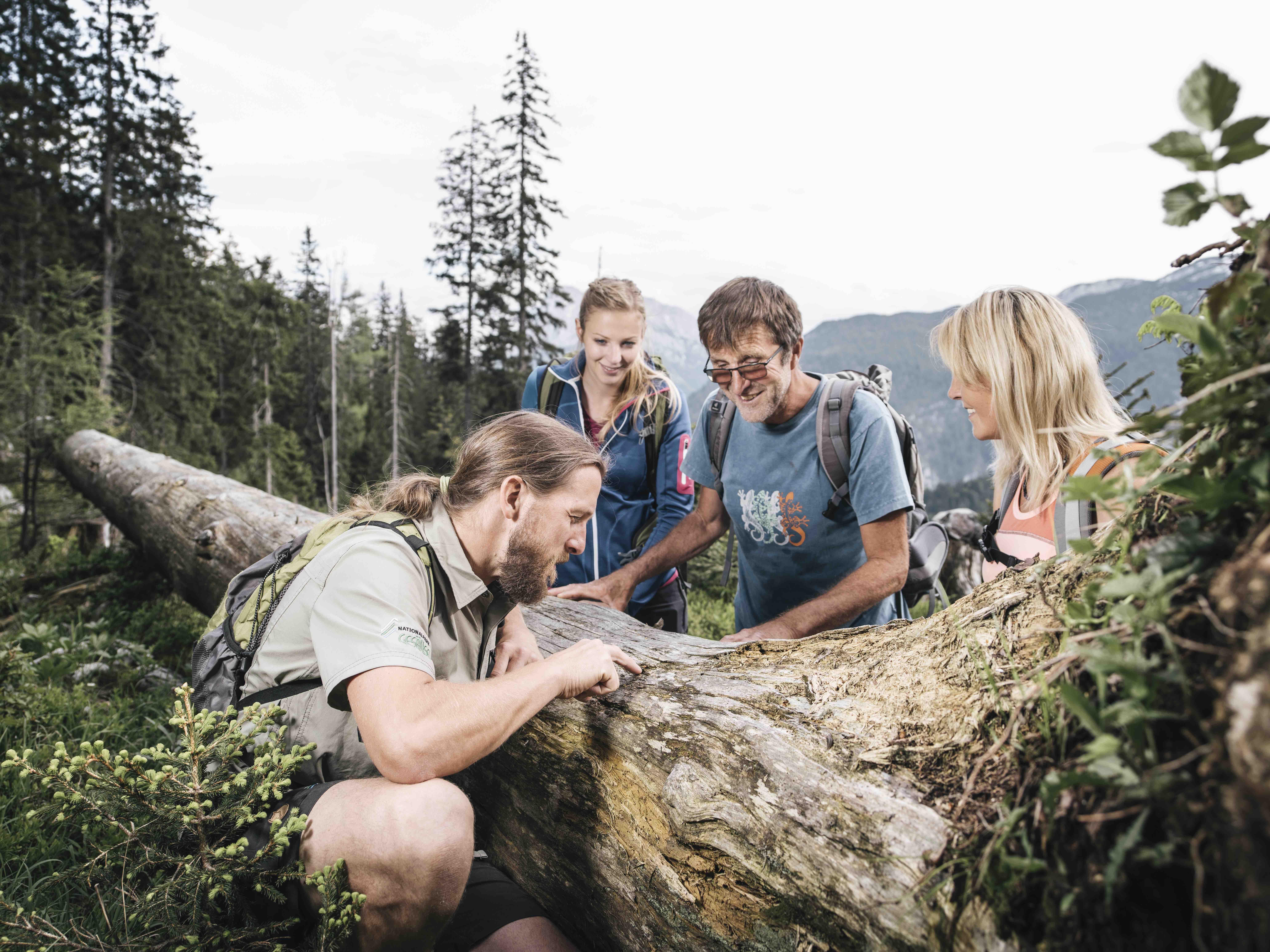 Buch_dir_deinen_Guide_1_c_Nationalpark_Gesaeuse_GmbH_Stefan_Leitner