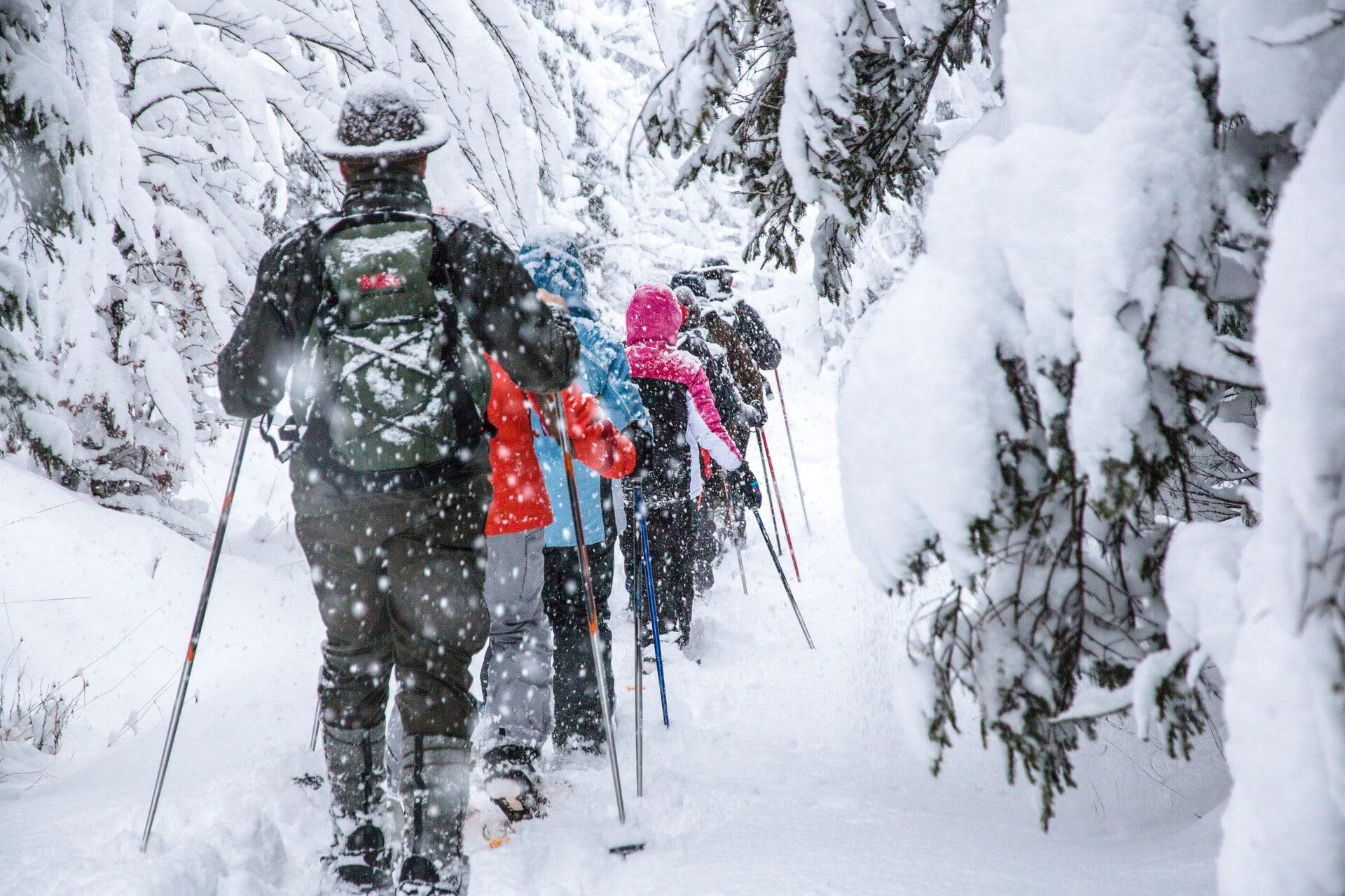 Schneeschuh Thomas Sattler_NPG (2)
